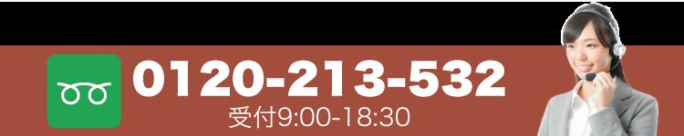 0120-213-532